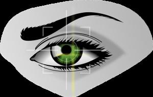 biometrics-154660_640 (1)